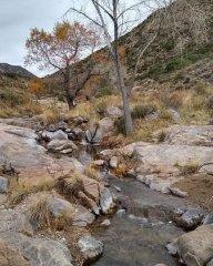 glamping-boulder-oaks-campground-2.jpg
